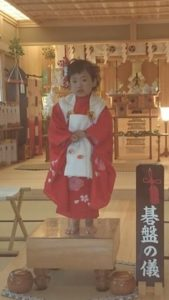 小千谷・石動神社・七五三・碁盤