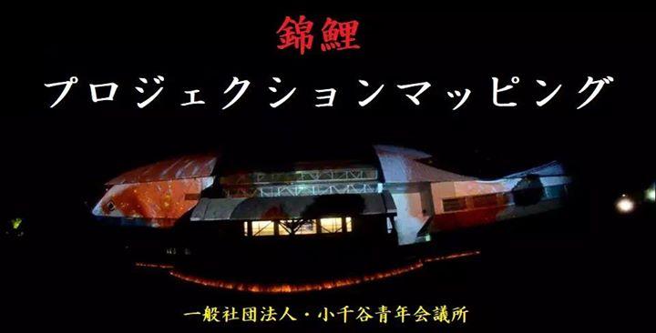『錦鯉・プロジェクションマッピング』