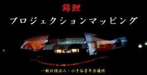 錦鯉・プロジェクションマッピング