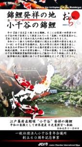 小千谷青年会議所・石動神社・日光東照宮・錦鯉奉納