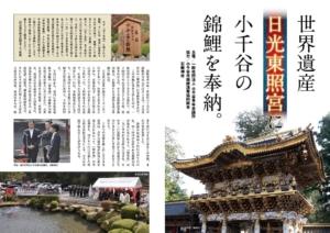 日光東照宮・石動神社・錦鯉・小千谷・月刊錦鯉・2
